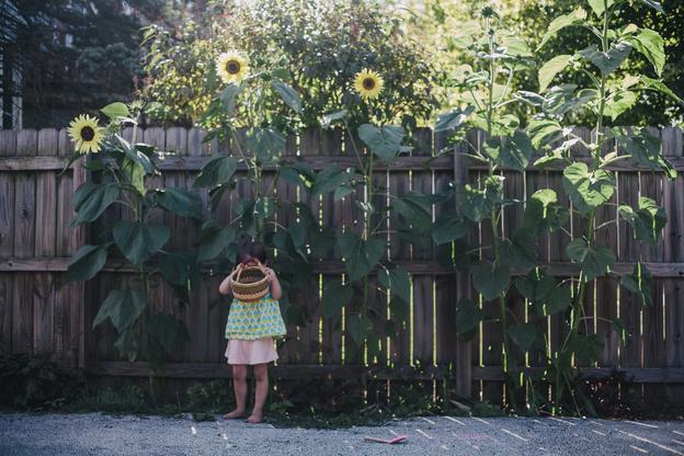 september8-14.jpg#asset:3141:blogImage1000